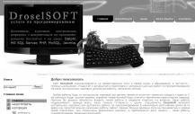 DroselSoft.ru – Дипломные работы